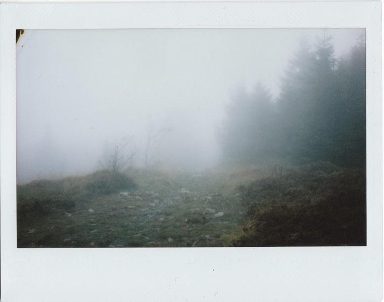Harz3